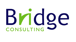 Bridge Consulting Logo-cropped.png